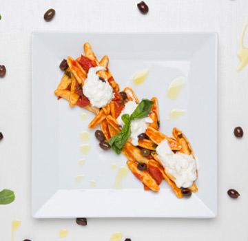 vistaqua-food-ant